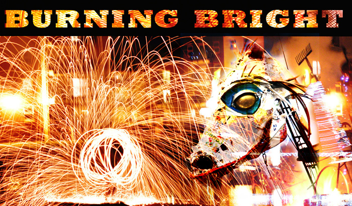 burning bright collage